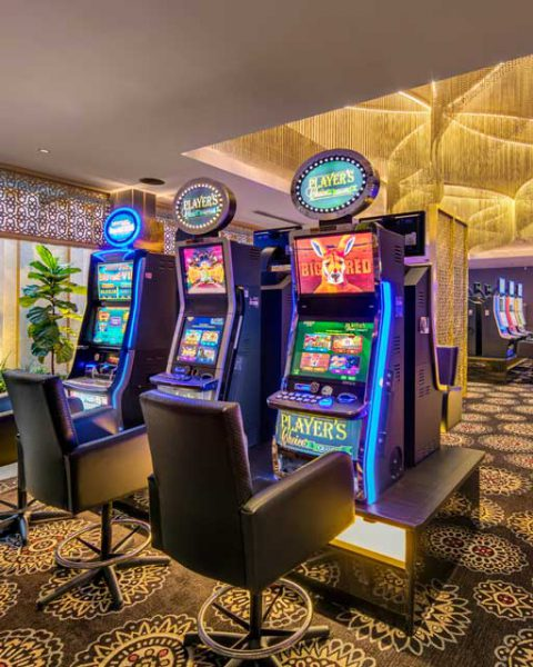 Gaming machines in the award winning Gregory Hills Hotel, design by Paul Kelly Design