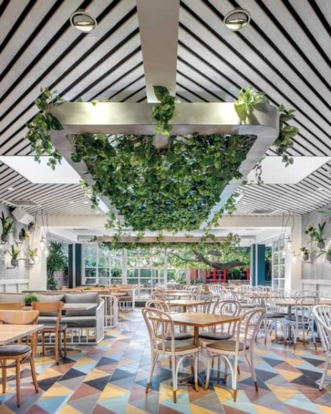 Tiles and green feature in The Garden Pavilion interior design by Paul Kelly Design